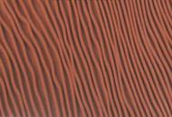 bộ dụng cụ tạo vân gỗ